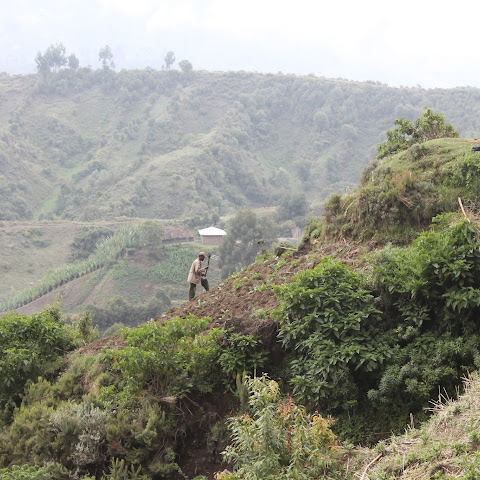 In highland areas, all fertile land is farmed - even on steep slopes
