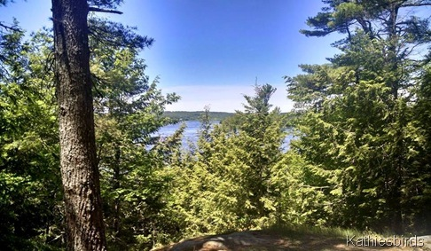 23. View of Kennebec 6-17-15