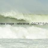 _DSC8715.thumb.jpg