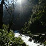 Vallée du Langtang, Népal - 14