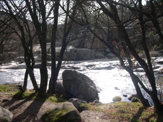 Protección ambiental del entorno de los ríos Alberche y Cofio
