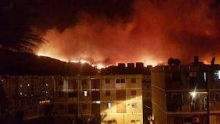 Incendies de forêts : 48 heures de fournaise dans l'Algérois