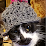 Alex Zini's profile photo