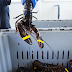 Fishing Industry Pushes Back On Biden Admin Mega Wind Project