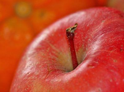 apple-1081105_1280