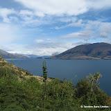 Lake_Hawea_Cameron_Flat