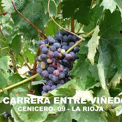 II Carrera Entre Viñedos 2009 (Toño Aguado)