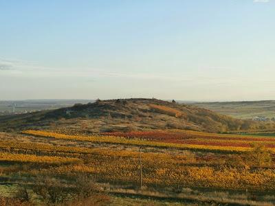 Blick von der Retzer Windmühle zum Gollitsch (325m)