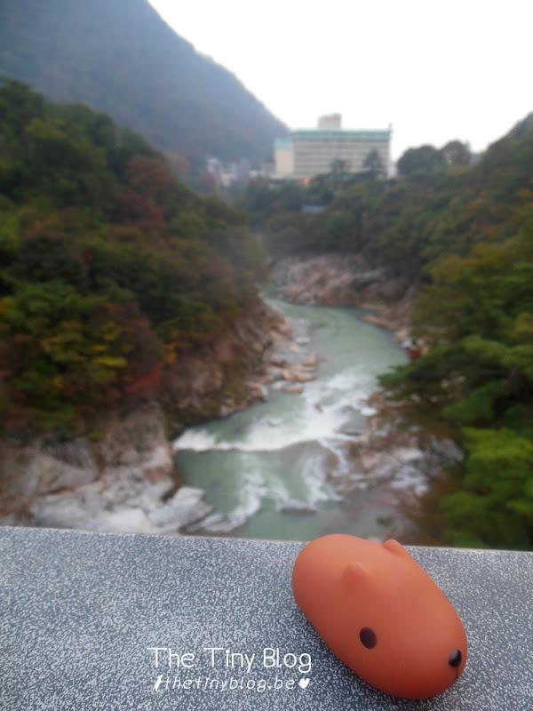 Kapibara-san on Tour around Japan Kapi-shoot