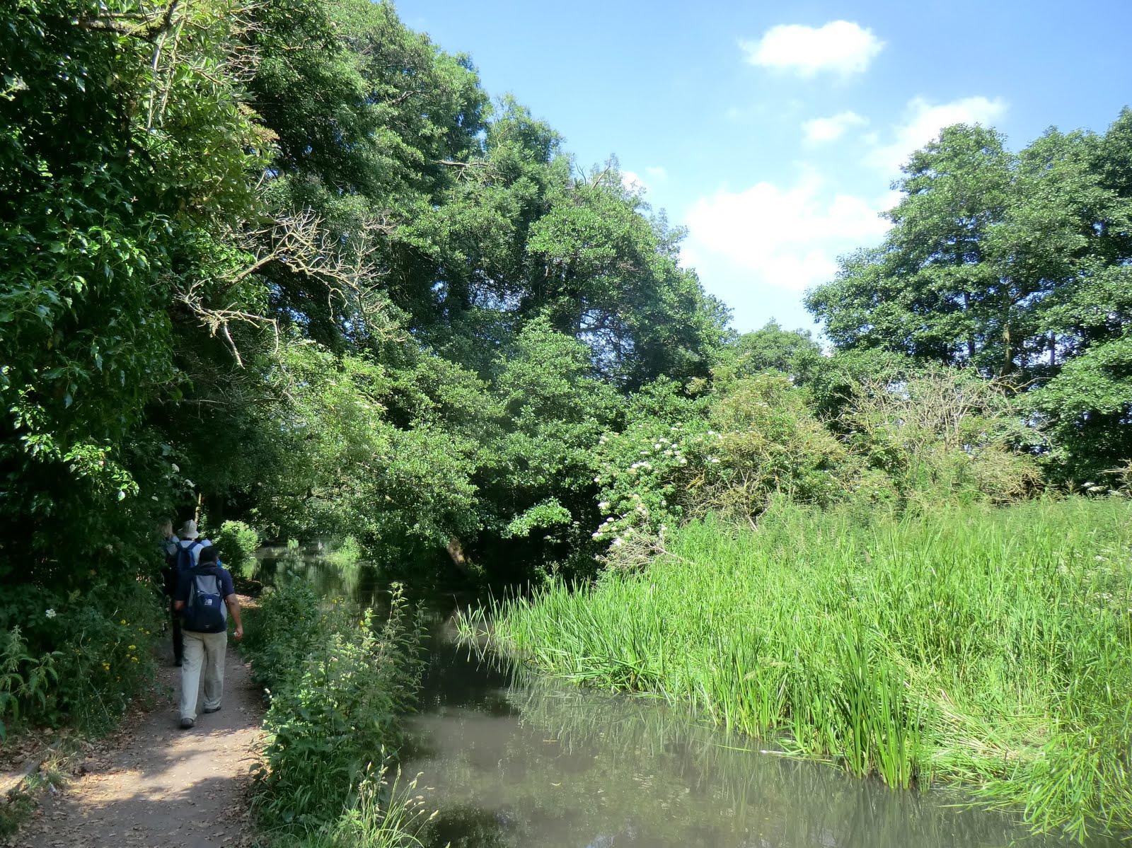 CIMG7506 River Darent, Lullingstone