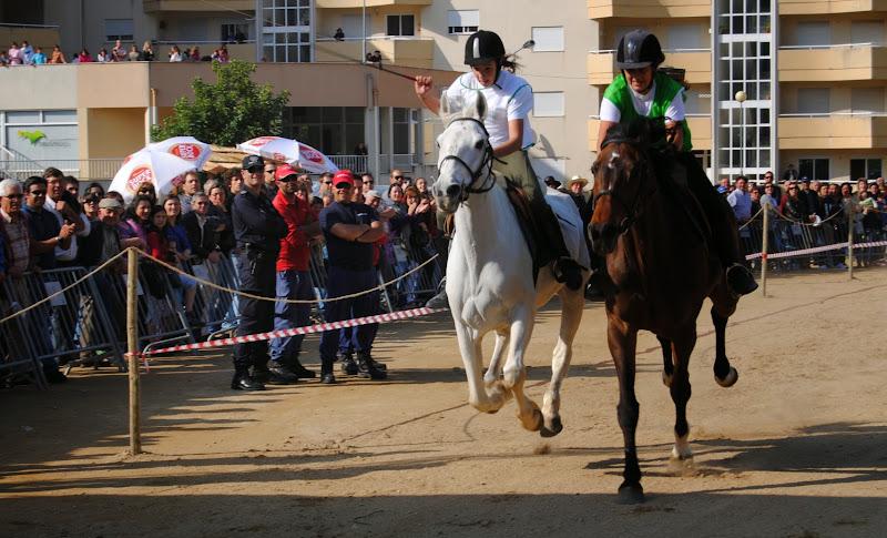 O mundo da arte equestre reúne-se em Lamego