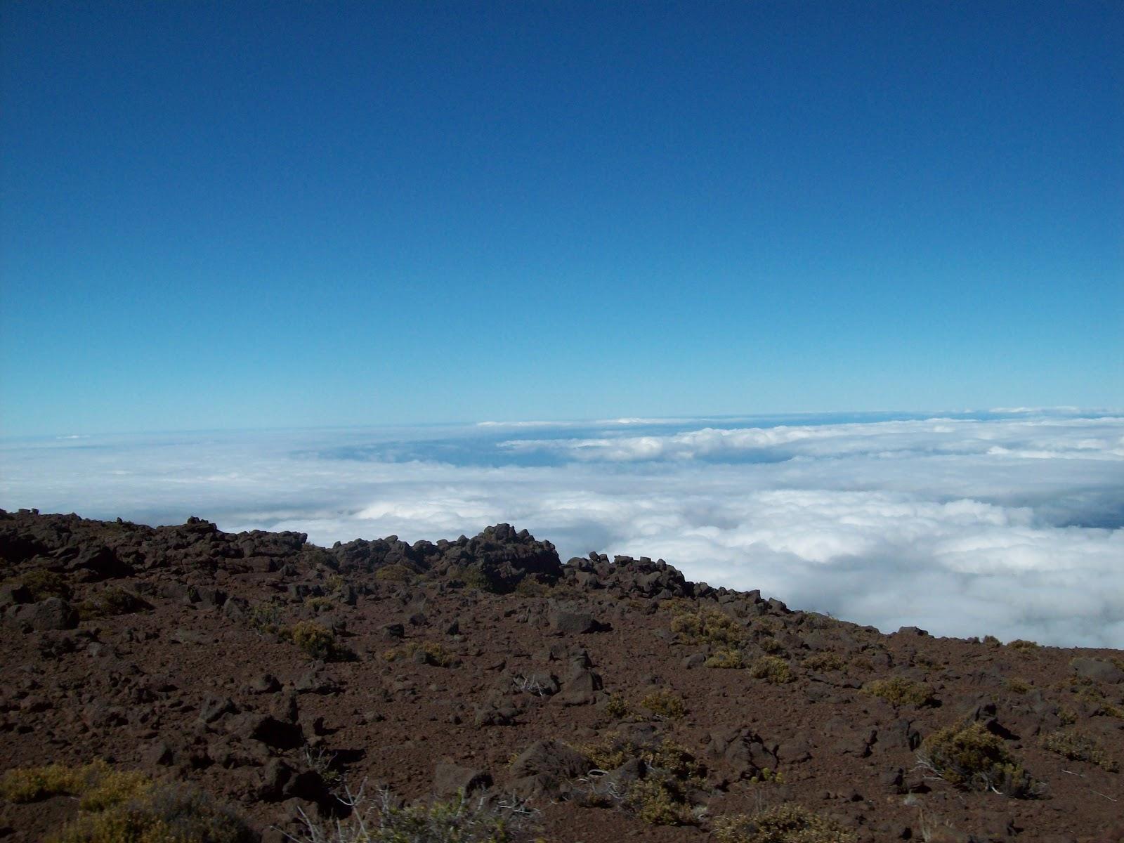 Hawaii Day 8 - 114_2077.JPG