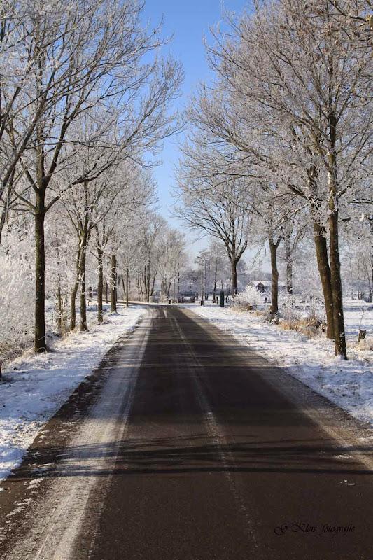 Winter - Winter-047.jpg