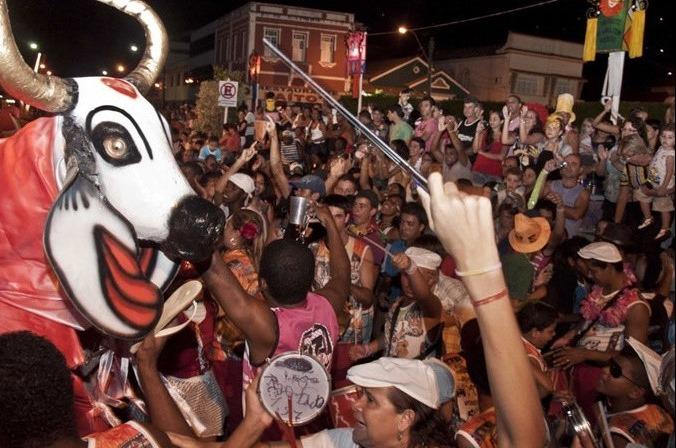Carnaval boi pintadinho