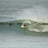 _DSC7556.thumb.jpg