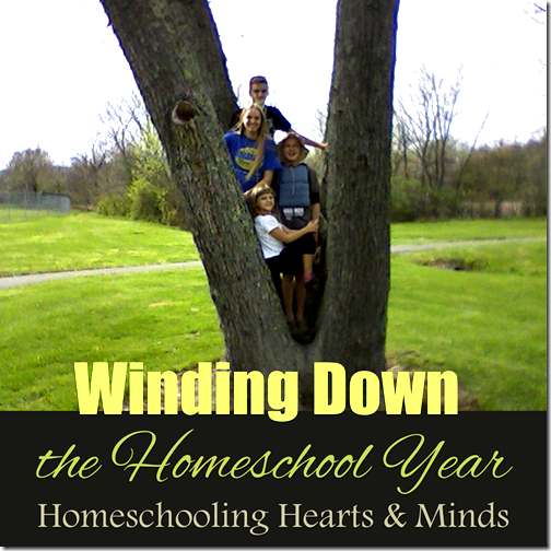 Winding Down the 2017 Homeschool Year at Homeschooling Hearts & Minds