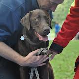 Survival voor Baas en Hond 2012 - DSC_0516.JPG