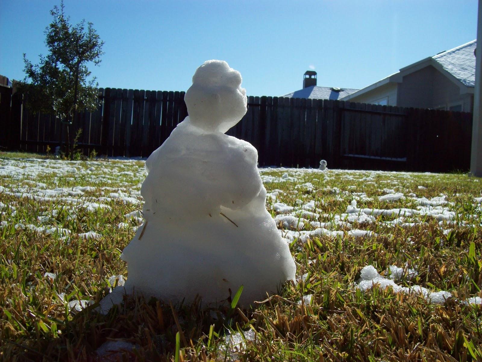 Snow Day - 101_5998.JPG