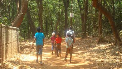 Photo: A long trail ahead - it's fun walking!