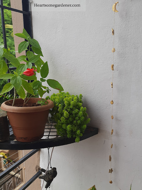 DIY with clay - wall hanging