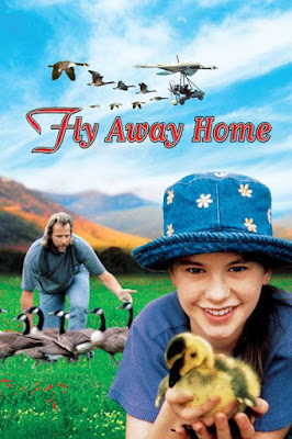 Fly Away Home (1996) BluRay 720p HD Watch Online, Download Full Movie For Free