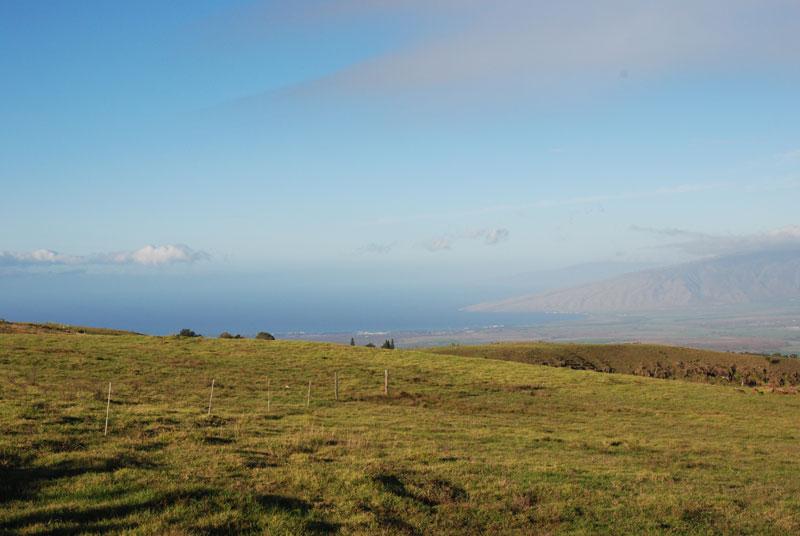 hawaii - 29.jpg