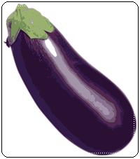 คำศัพท์ภาษาอังกฤษ_eggplant_Vegetable
