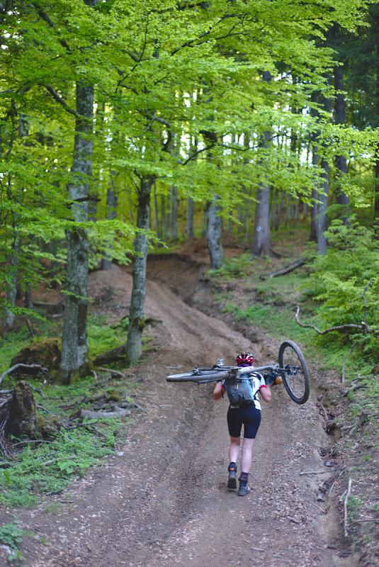 Bicicleta in spate si verdele crud ce in curand se va trece si in zonele inalte.
