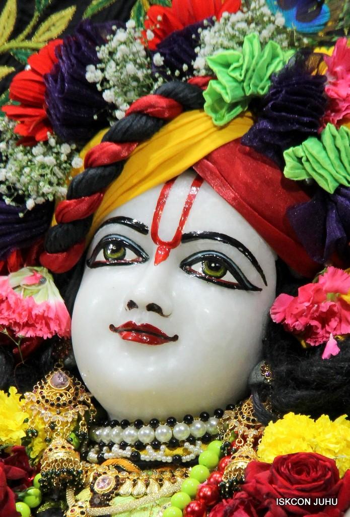 ISKCON Juhu Sringar Deity Darshan on 31st Dec 2016 (33)