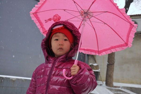 Little Beijing Cutie