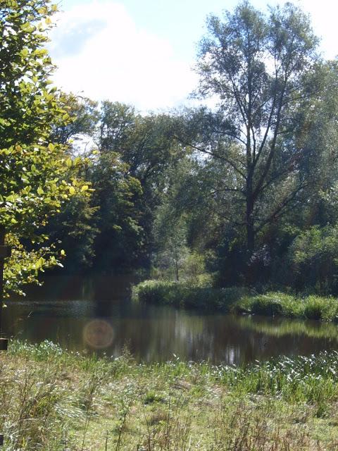 blenheim palace lake 2