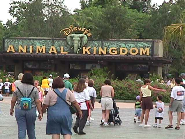 0510Animal Kingdom Parking Lot