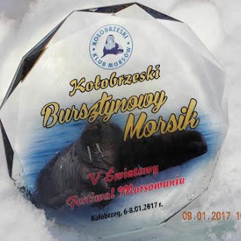 2017.01.06-08: V Światowy Festiwal Morsowania Kołobrzeg