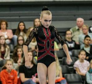 Han Balk Fantastic Gymnastics 2015-9573.jpg