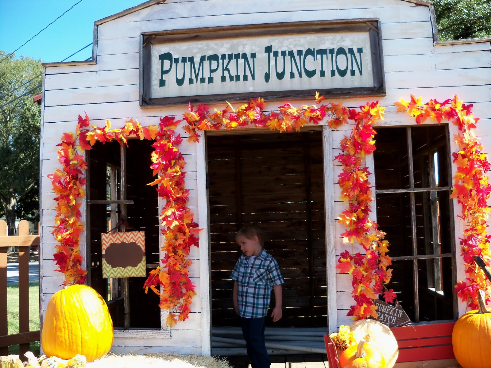 Pumpkin Patch 2015 - 100_0418.JPG