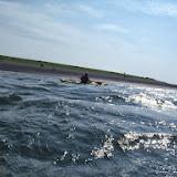 Texel 25 augustus 2013 - P8250139.JPG