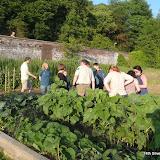 Scouts Gardening - Keele