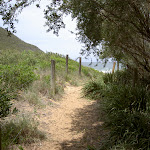 Track from Tallow Beach camping area to beach
