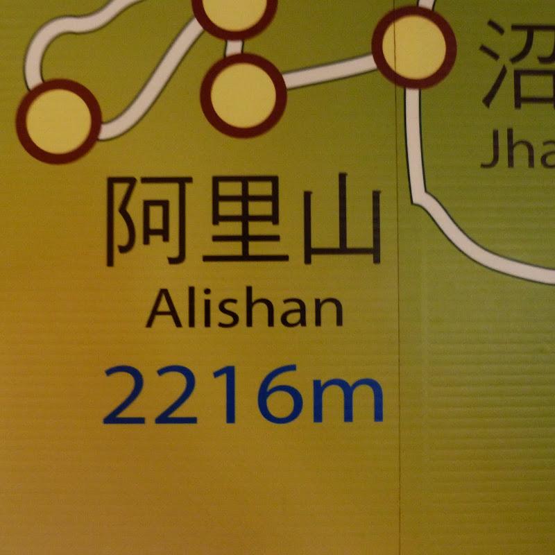 Alishan, puis Shanmei en scooter, J 15 - P1180507.JPG