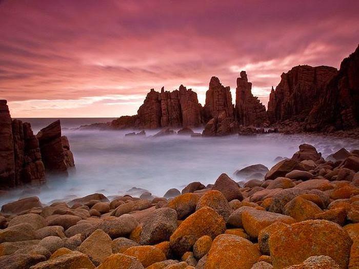 Австралия | Достопримечательности | Остров Филлип Это один из самых красивых островов Австралии с самыми лучшими пляжами. На территории в 100 гектаров можно увидеть много чего удивительного — множество мангровых деревьев, кустарников и другой растительности, заболоченные территории с разнообразной флорой. Среди представителей здешней фауны — популяция пингвинов, которые каждый день путешествуют от своих жилищ к морю, и обратно, морские котики, коалы и множество редких птиц. Остров входит в состав одного из Национальных парков Австралии.