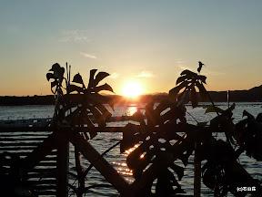 2009/8/24の夕日です。雲が無く、ストレートな夕日が飛び込んできます~