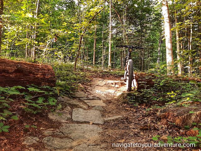 The Mountain Bike Trails at Powhite Park
