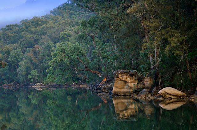 Apple Tree Bay aux environs de Kuring-gai, New South Wales (Australie), 9 juillet 2009. Photo : Barbara Kedzierski
