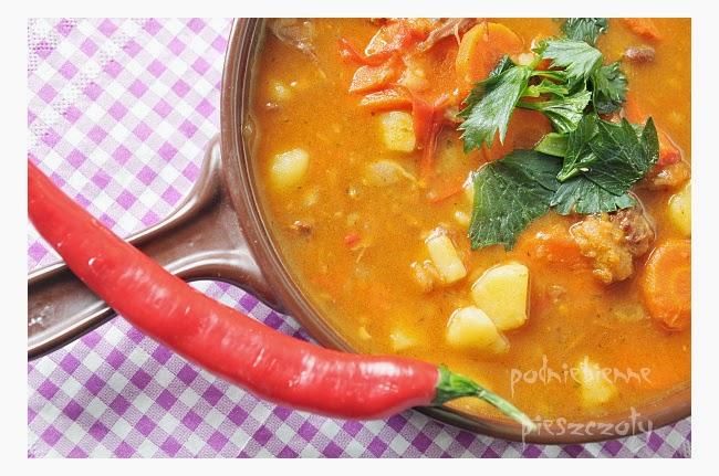 Pikantna zupa ogonowa