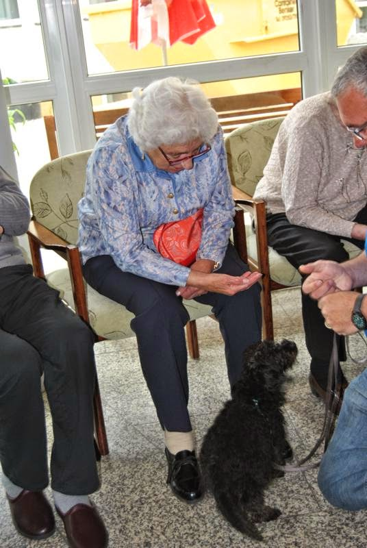 2014-05-27: Besuch im Alten- und Pflegeheim St. Michael - DSC_0177.JPG
