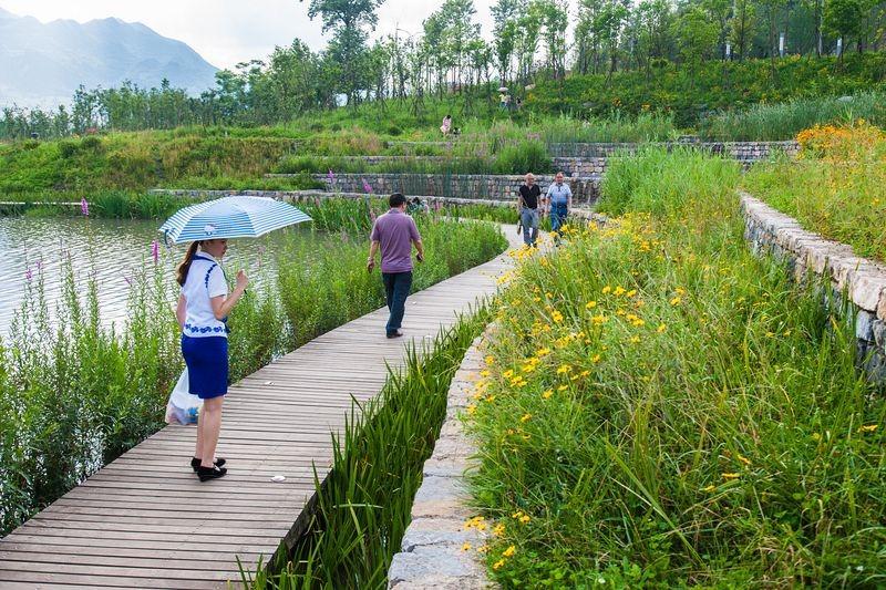 yanweizhou-park-4