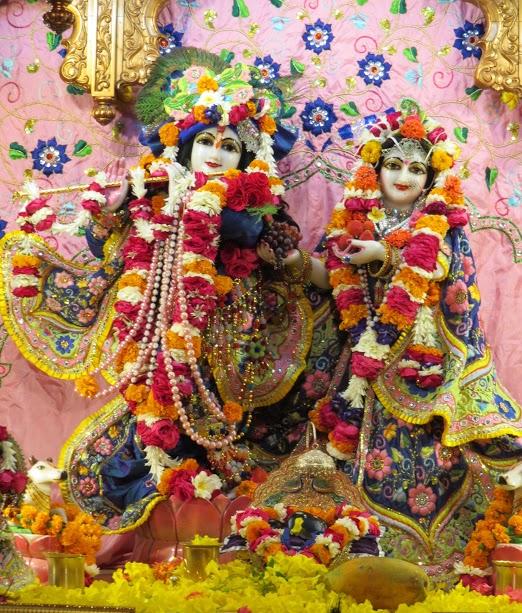 ISKCON Vallabh vidhyanagar Deity Darshan 17 jan 2017 (2)