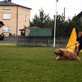 Obrona sportowa Abi - obrona (4).jpg