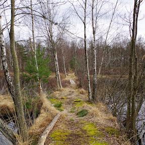 Näset Naturområde Osby