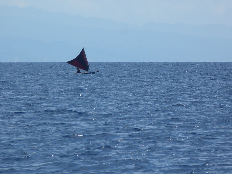 Dauin, Dumaguete, APO Island (Negros) - philippines%2Bdeux%2B585.JPG
